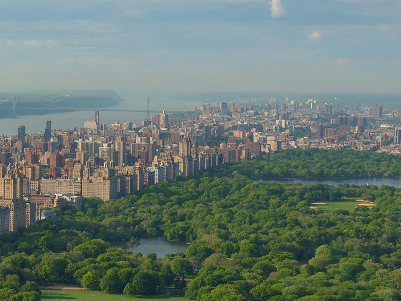 The trees of Central Park showcase the natural beauty of New York City with tall buildings and the George Washington Bridge rising up in the distance.